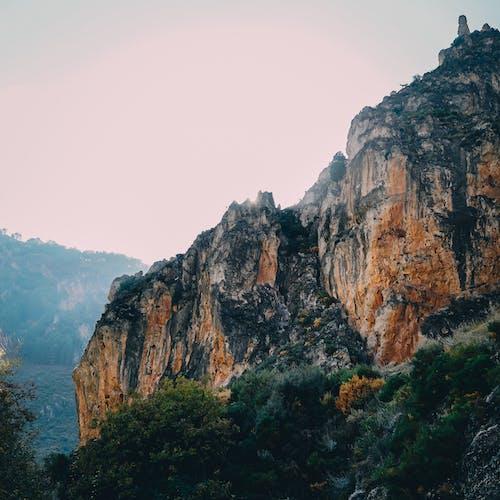 Gratis stockfoto met berg, bomen, geologie, klif