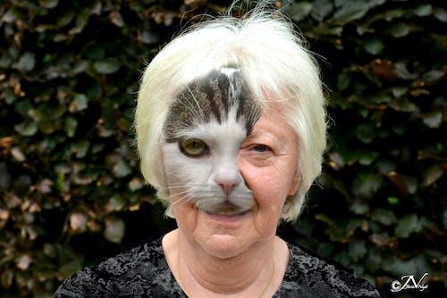 Základová fotografie zdarma na téma kočičí žena