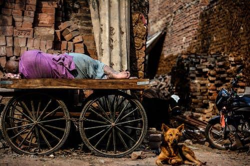 Бесплатное стоковое фото с бедность, бездомный, босиком, Взрослый