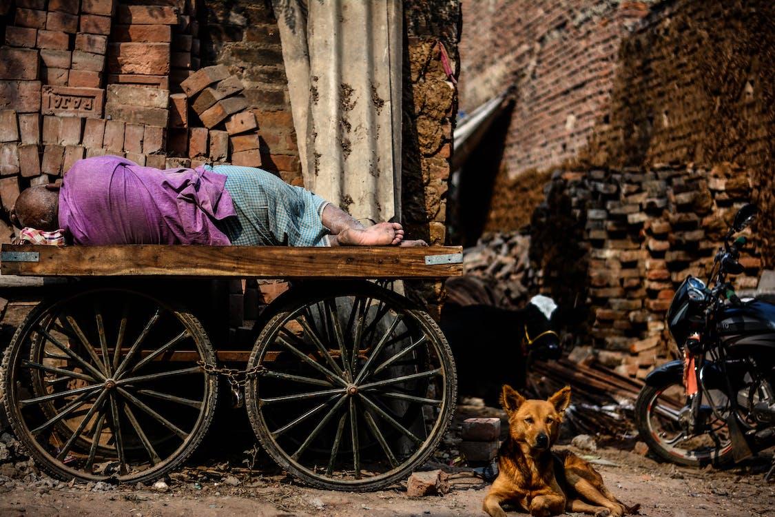 bez domova, Bosý, červené tehly