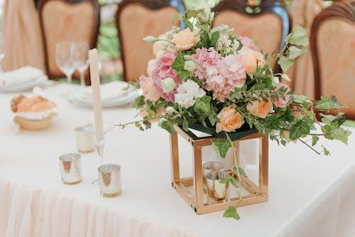 Ingyenes stockfotó növényvilág, terítés, virág, virágok témában