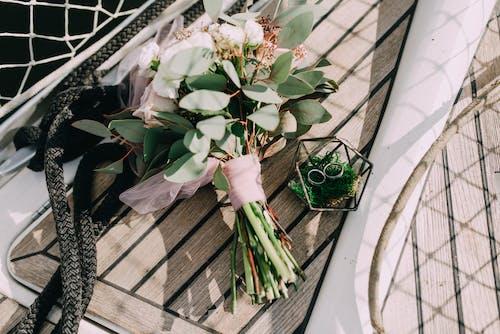 Fotos de stock gratuitas de al aire libre, anillos, anillos de boda, Boda