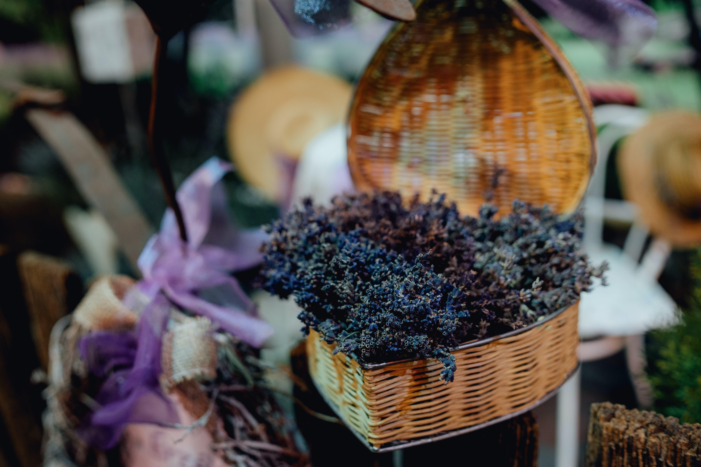 Plant In Brown Wicker Heart Basket