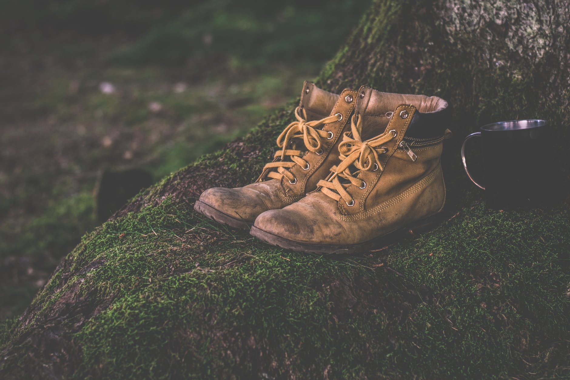 Work boots placed in a tree beside a black cup