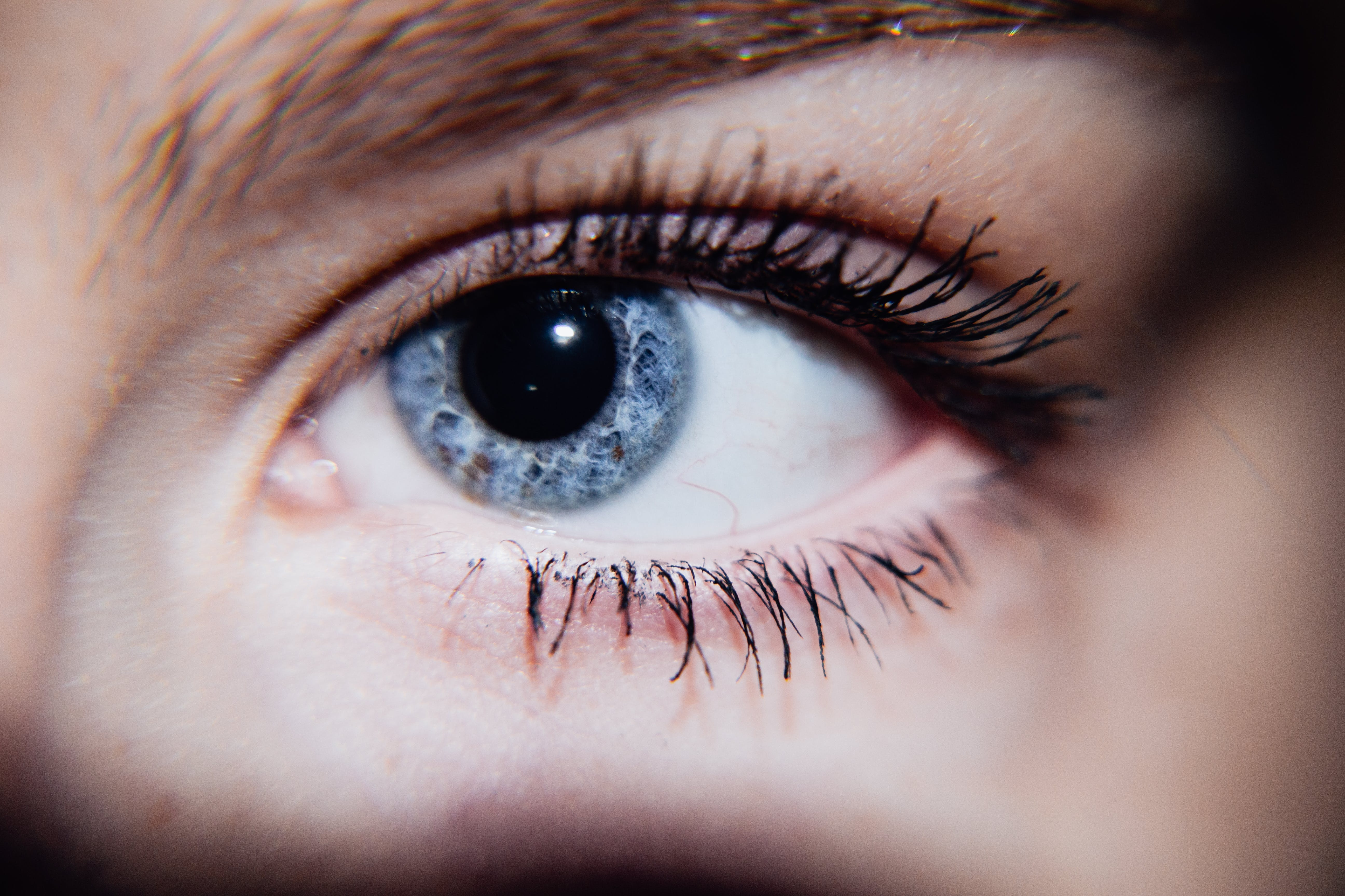 Free stock photo of blue, eye