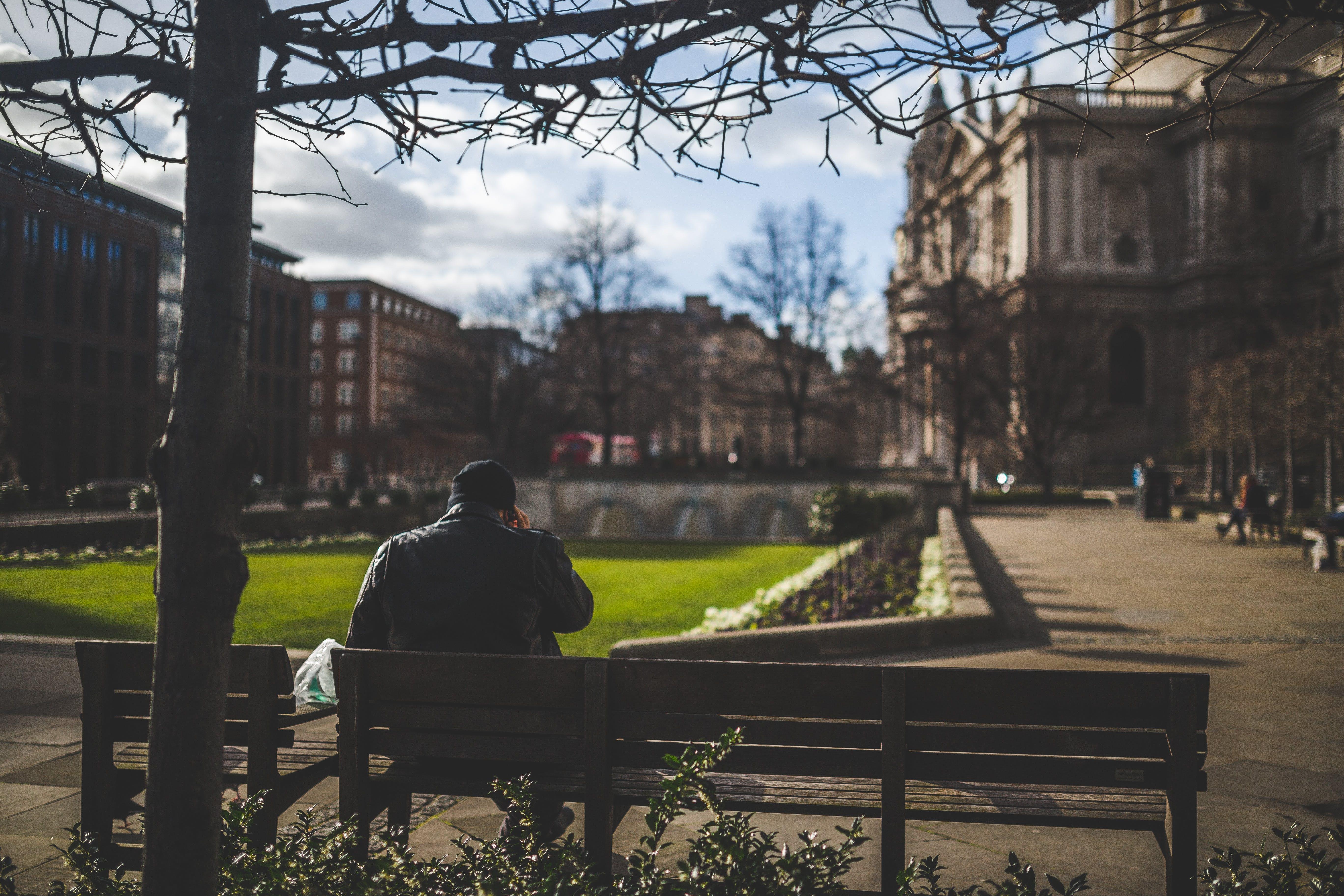 Man Sitting on Brown Wooden Bench during Daytime