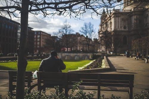 건물, 공원, 나무, 남자의 무료 스톡 사진
