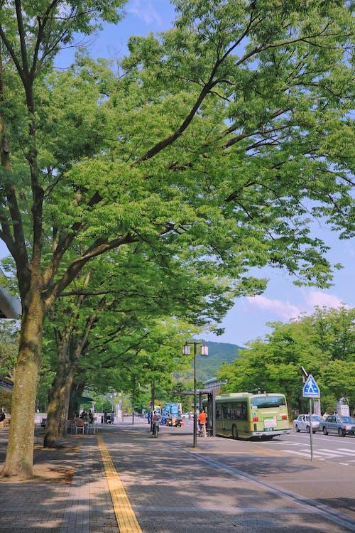 autobusová zastávka, čerstvý, chodník