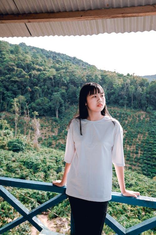 Foto d'estoc gratuïta de arbres, asiàtica, bellesa, bonic