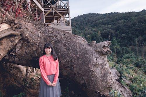 ağaçlar, aşındırmak, Asyalı kadın, asyalı kız içeren Ücretsiz stok fotoğraf