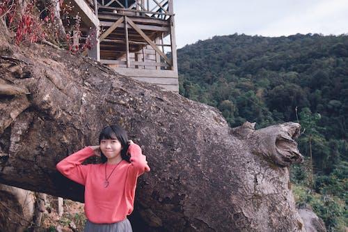 Foto stok gratis alam, bagus, batang pohon, cewek
