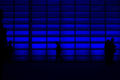People Standing Beside Blue Wall