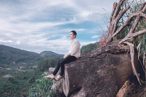 Základová fotografie zdarma na téma denní světlo, hory, kořen, krajina