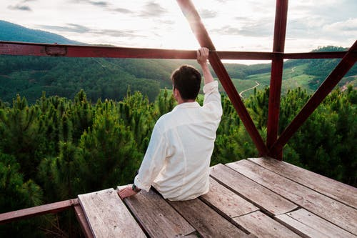 Man Sitting on Wooden Surface Looking at Trees