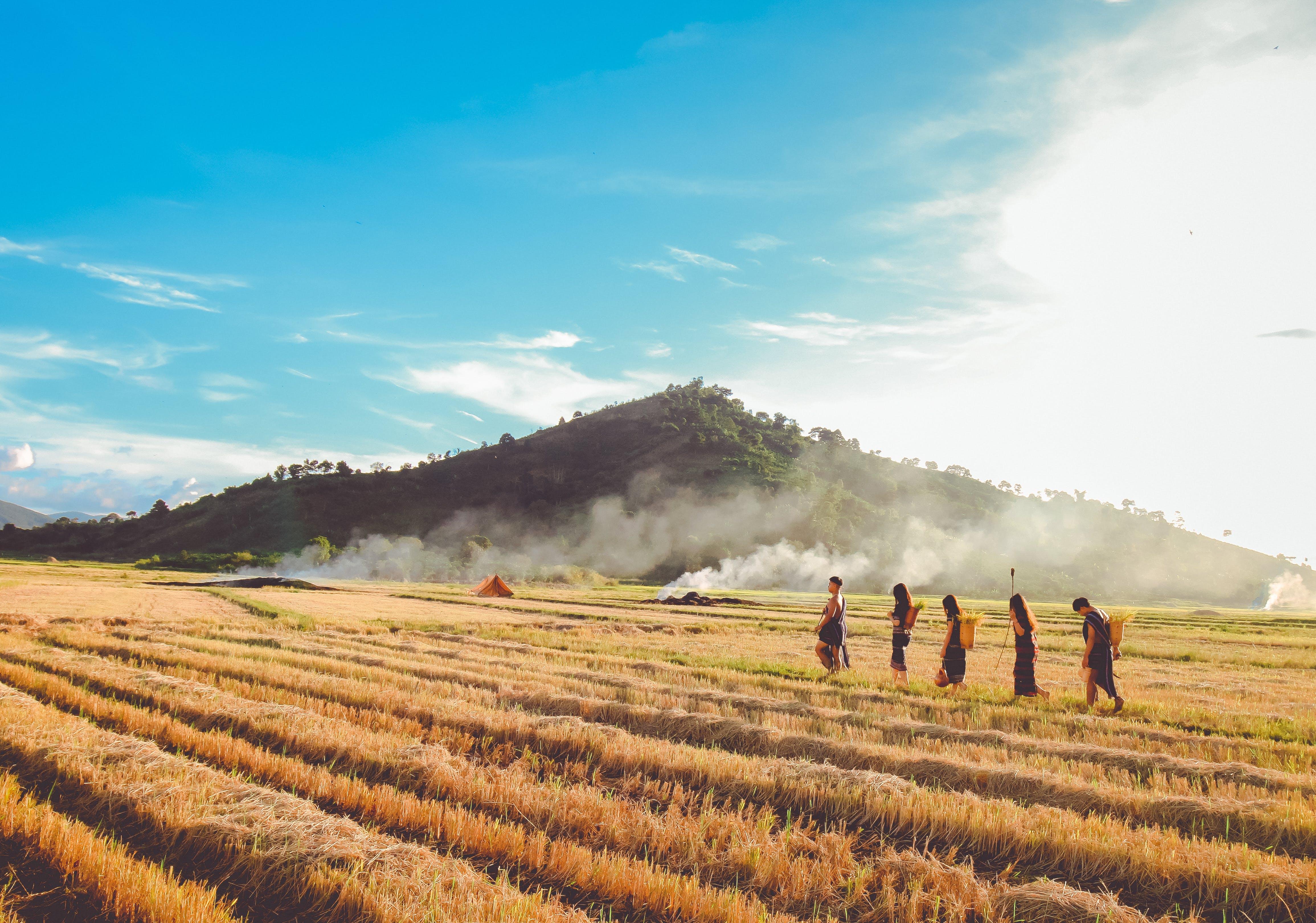 Δωρεάν στοκ φωτογραφιών με αγρόκτημα, Άνθρωποι, βοσκοτόπι, γήπεδο