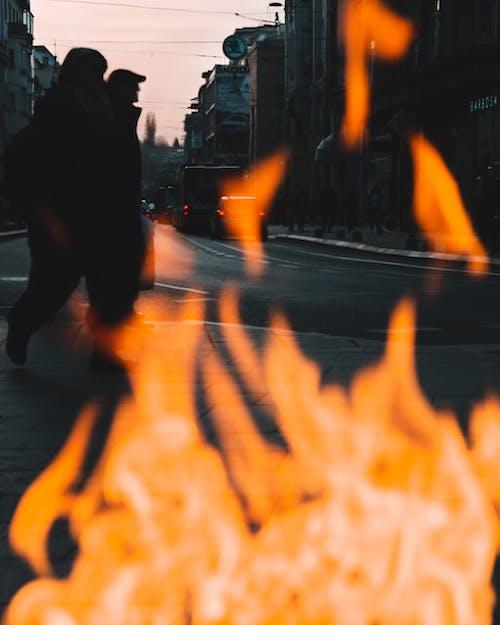 交通系統, 人, 光, 反射 的 免费素材照片