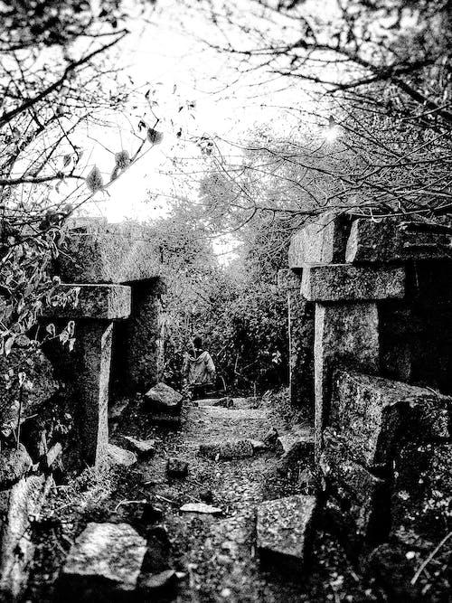 Fotos de stock gratuitas de belleza en la naturaleza, blanco y negro, estructura de hormigón