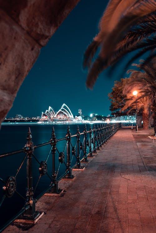 Kostenloses Stock Foto zu abend, architektur, australien, bäume