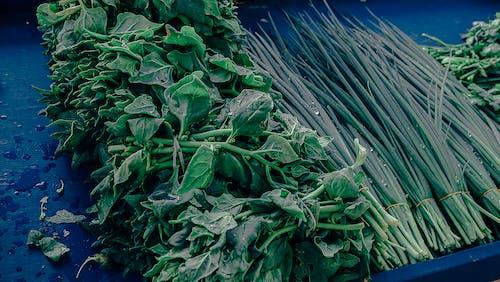 신선한 야채의 무료 스톡 사진