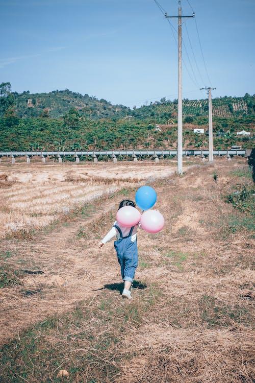 Gratis stockfoto met ballonnen, dochter, gras, iemand