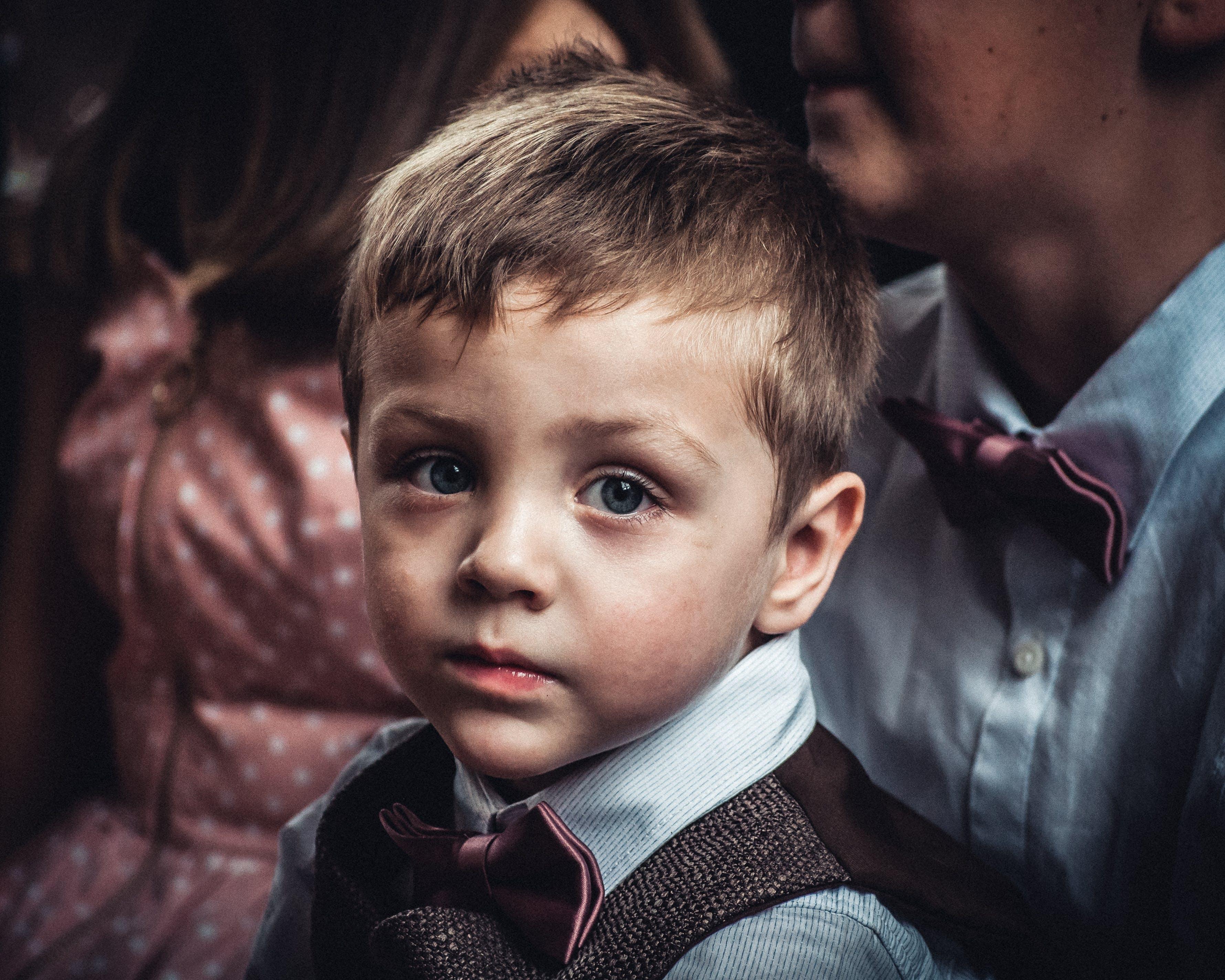 Free stock photo of little boy portrait, portrait