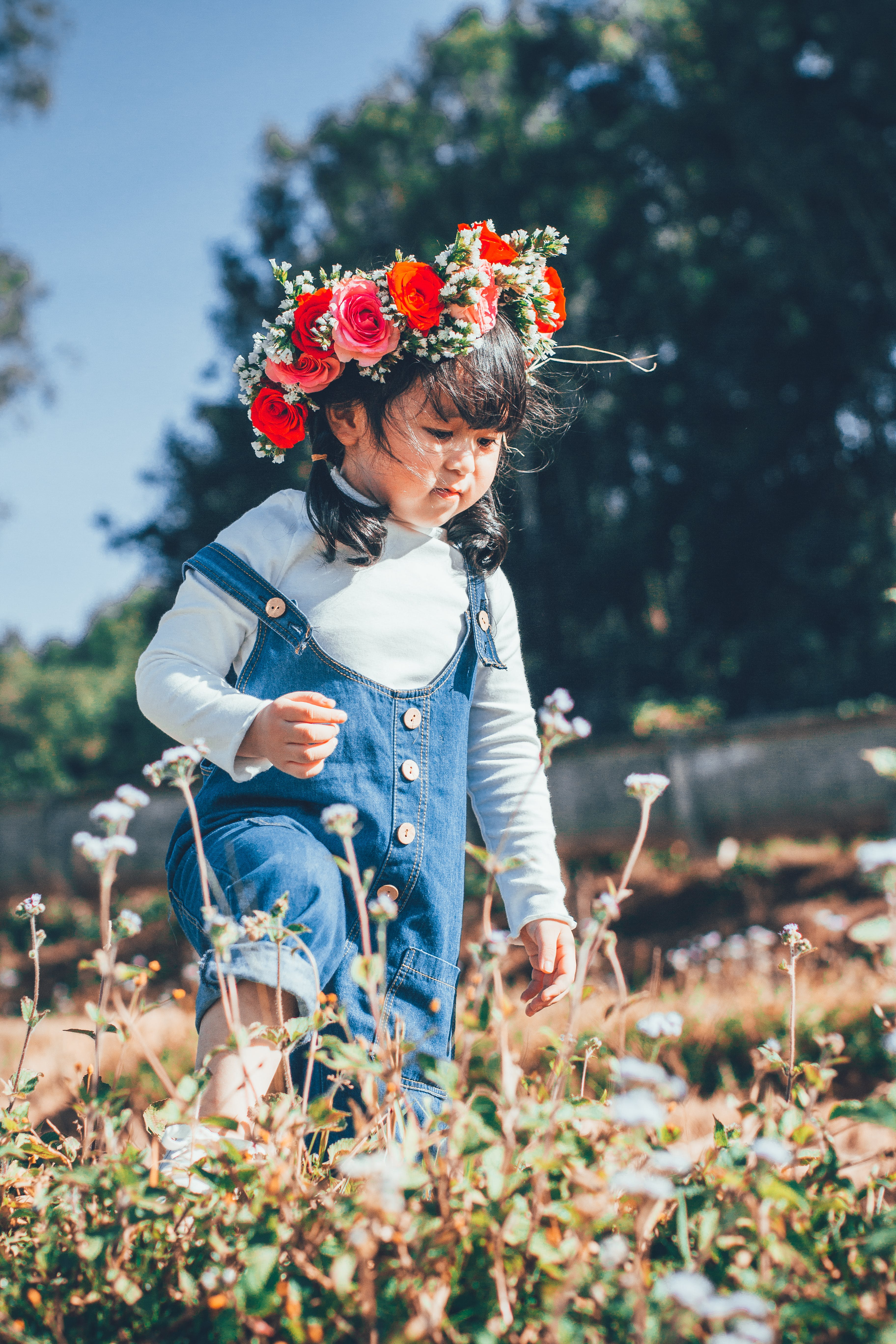 Girl In Blue Denim Dungaree With Red Flowers On Head Walking On Flower Field