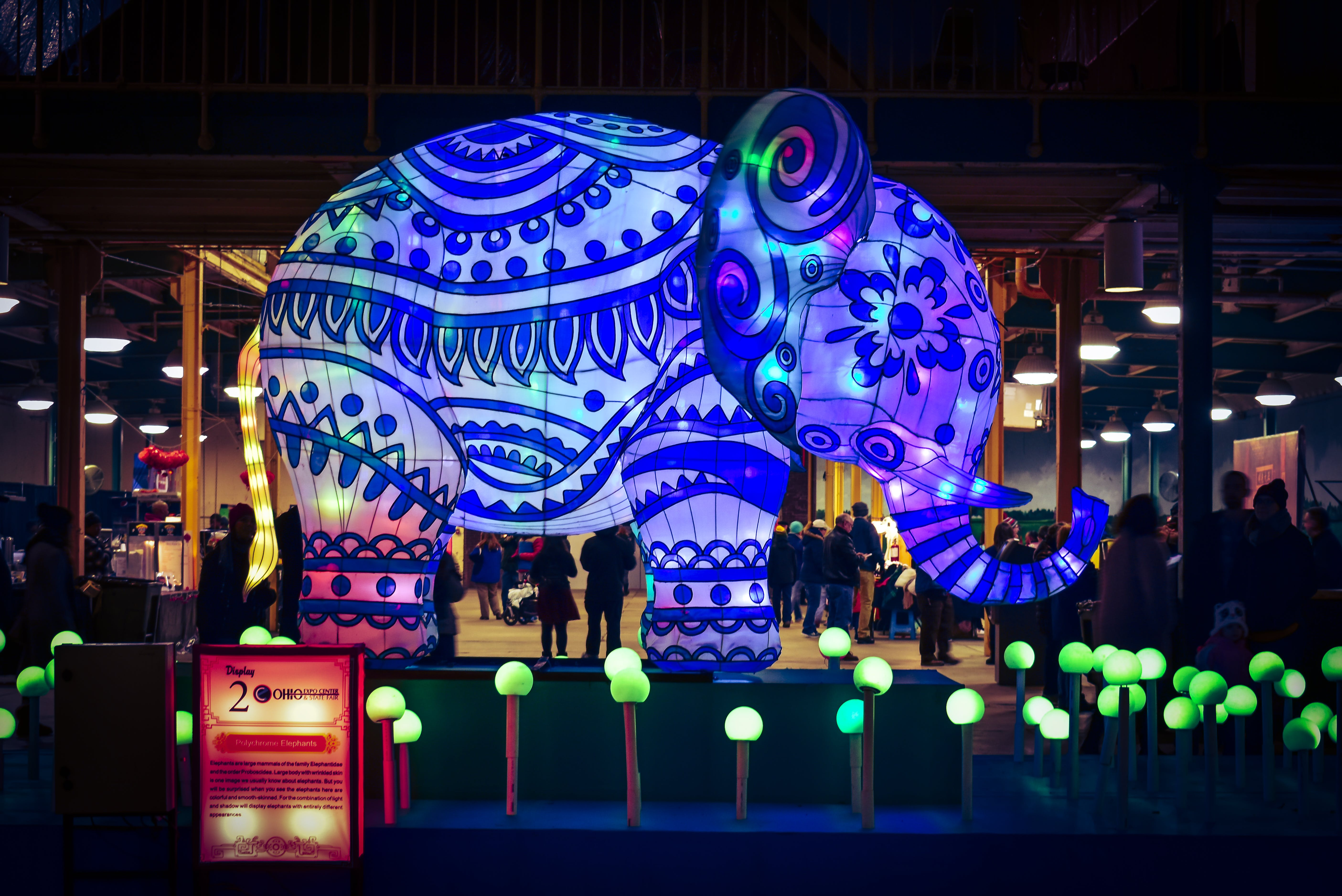 Blue and Green Elephant With Light