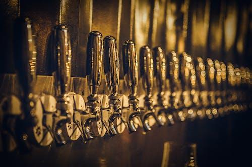 扎啤酒, 條, 設備 的 免費圖庫相片