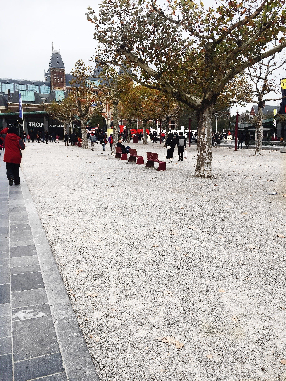 Free stock photo of amsterdam, big trees, museum, square