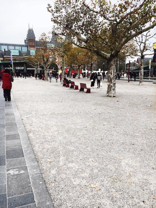 アムステルダム, 博物館, 平方の無料の写真素材