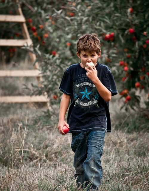 Photo of Boy Eating an Apple