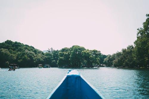 ağaçlar, deniz araçları, gemiler içeren Ücretsiz stok fotoğraf