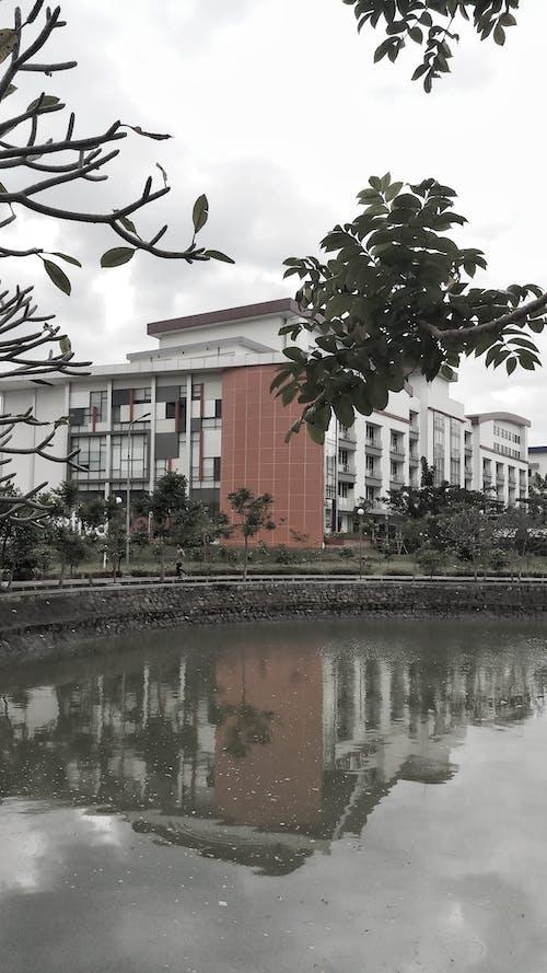 Free stock photo of building, campus, moody, school