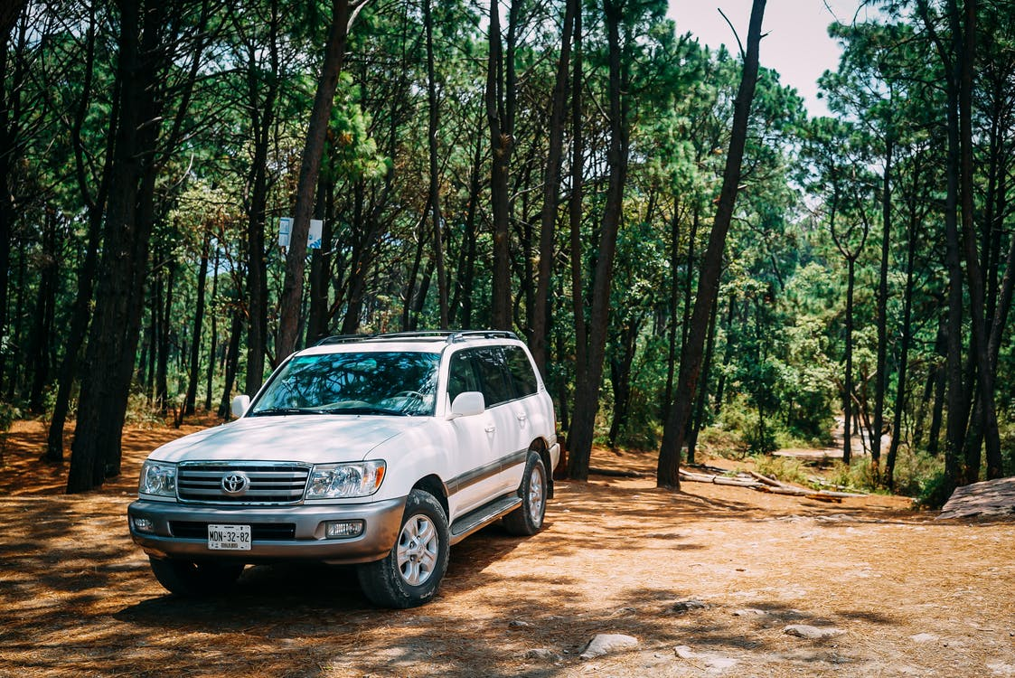 White Toyota Land Cruiser Parked In Forest