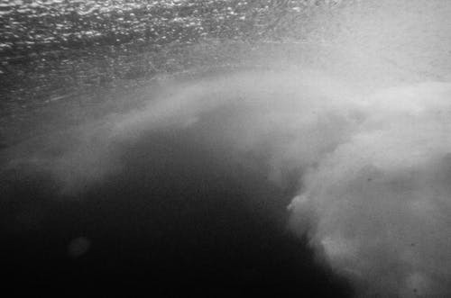 Fotos de stock gratuitas de blanco y negro, cerca del mar, debajo, mar