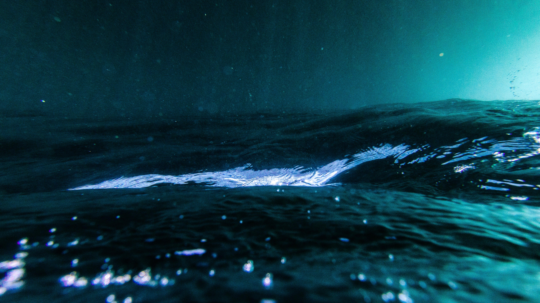 Free stock photo of ocean, sea, underwater, upside down
