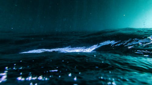 Fotos de stock gratuitas de al revés, bajo el agua, mar, Oceano
