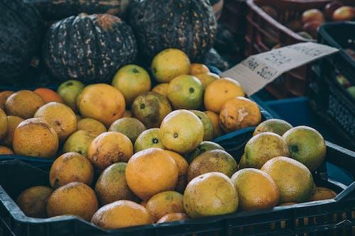 건강한, 과일, 과즙이 많은, 노점의 무료 스톡 사진