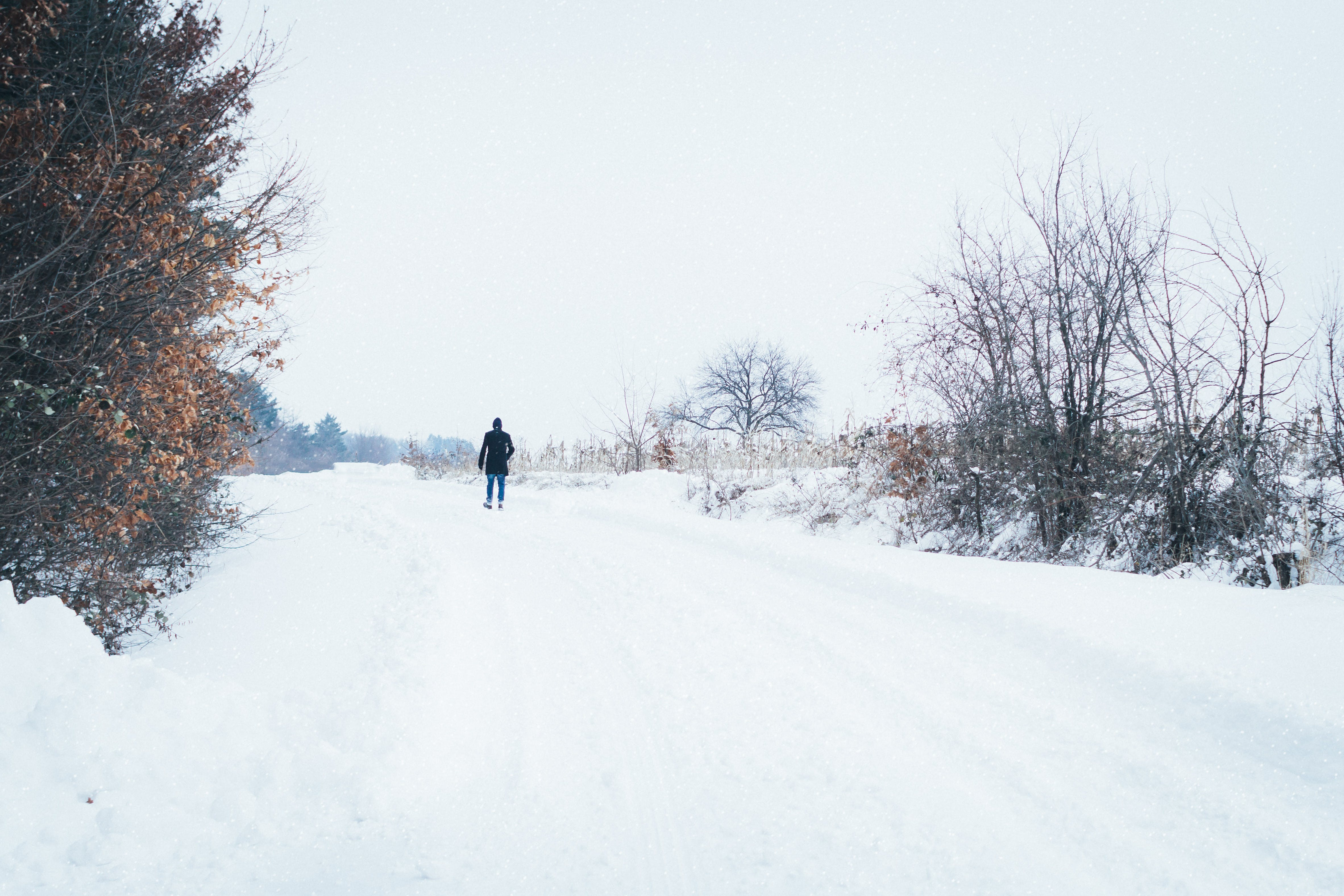 Man Walking on Dirt Road Covered by Snow