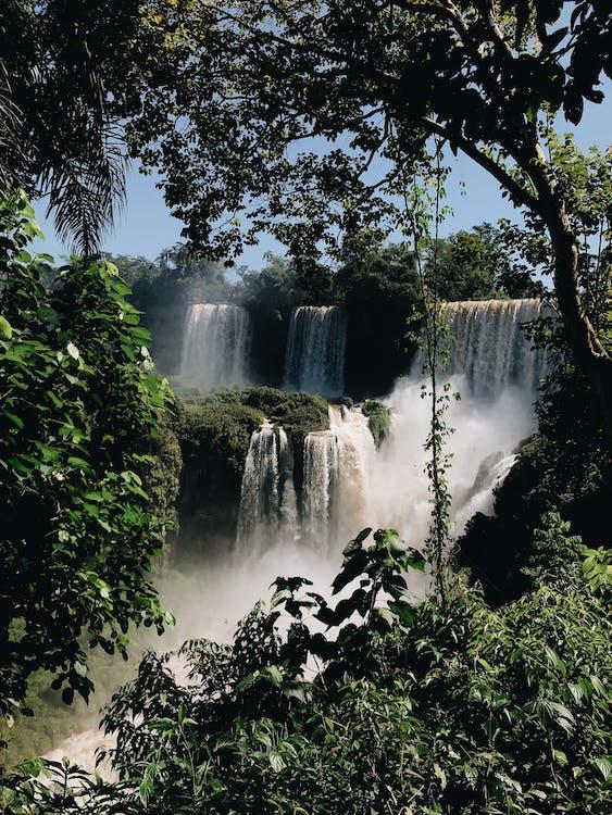 dažďový prales, exteriéry, kaskáda
