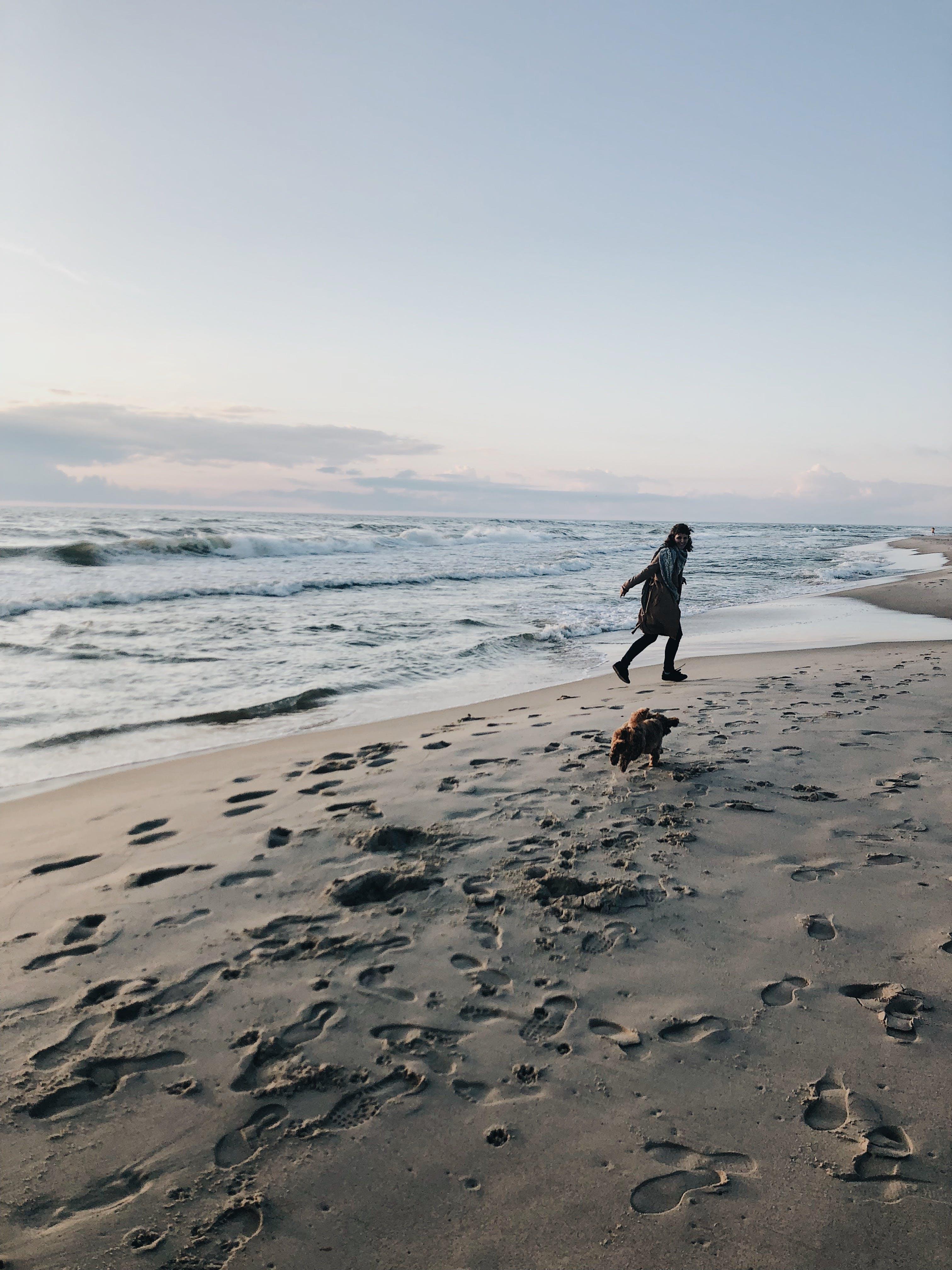 Gratis stockfoto met blikveld, iemand, oceaan, strand
