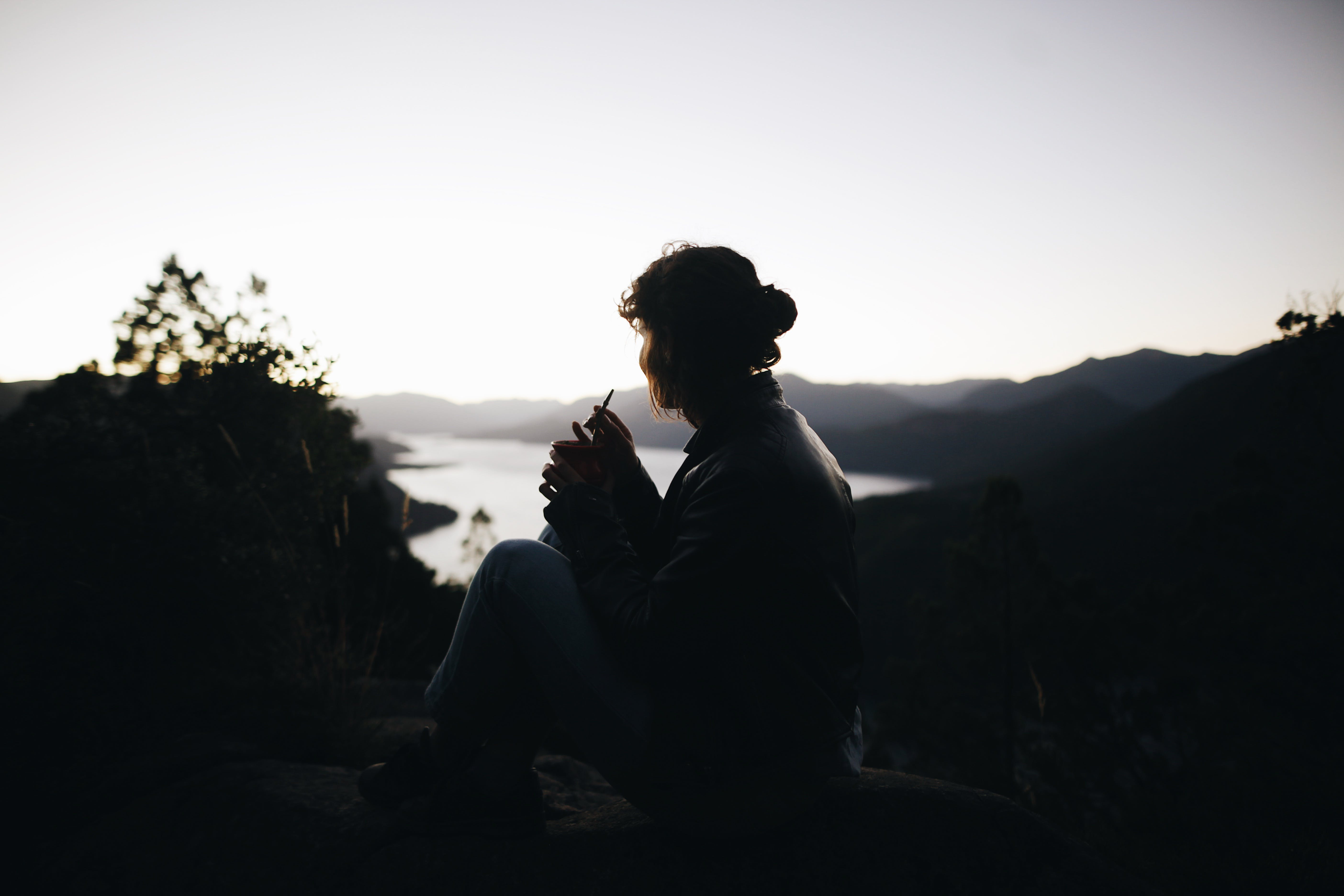 Silhouette of Person Sitting Beside Plant Across Large Body of Water