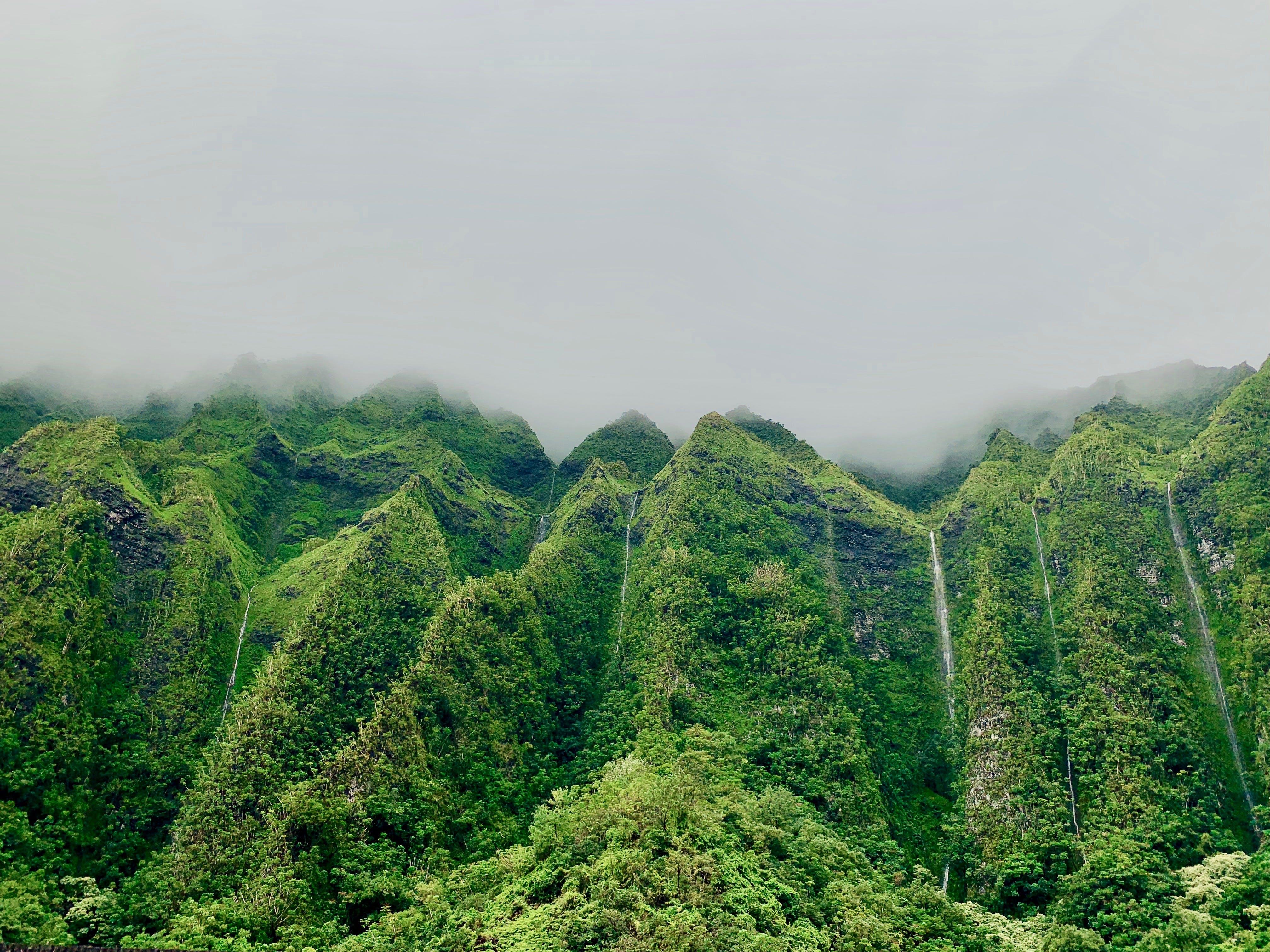 Základová fotografie zdarma na téma denní světlo, hory, krajina, les