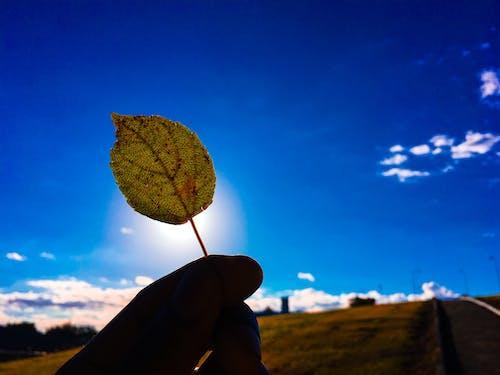 Immagine gratuita di alto, atmosfera, azzurro, bellissimo