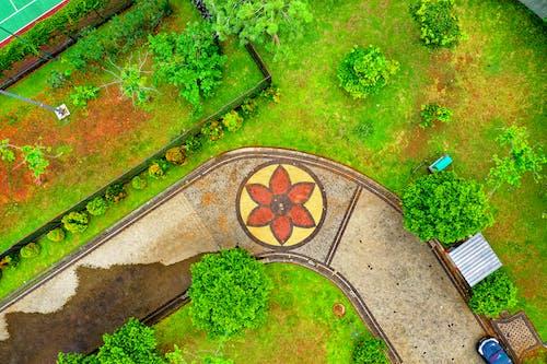 Gratis stockfoto met achtererf, antenne, bloemen, bomen