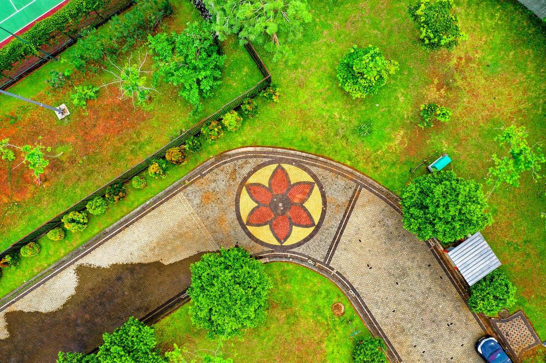 Aerial Photo of Backyard