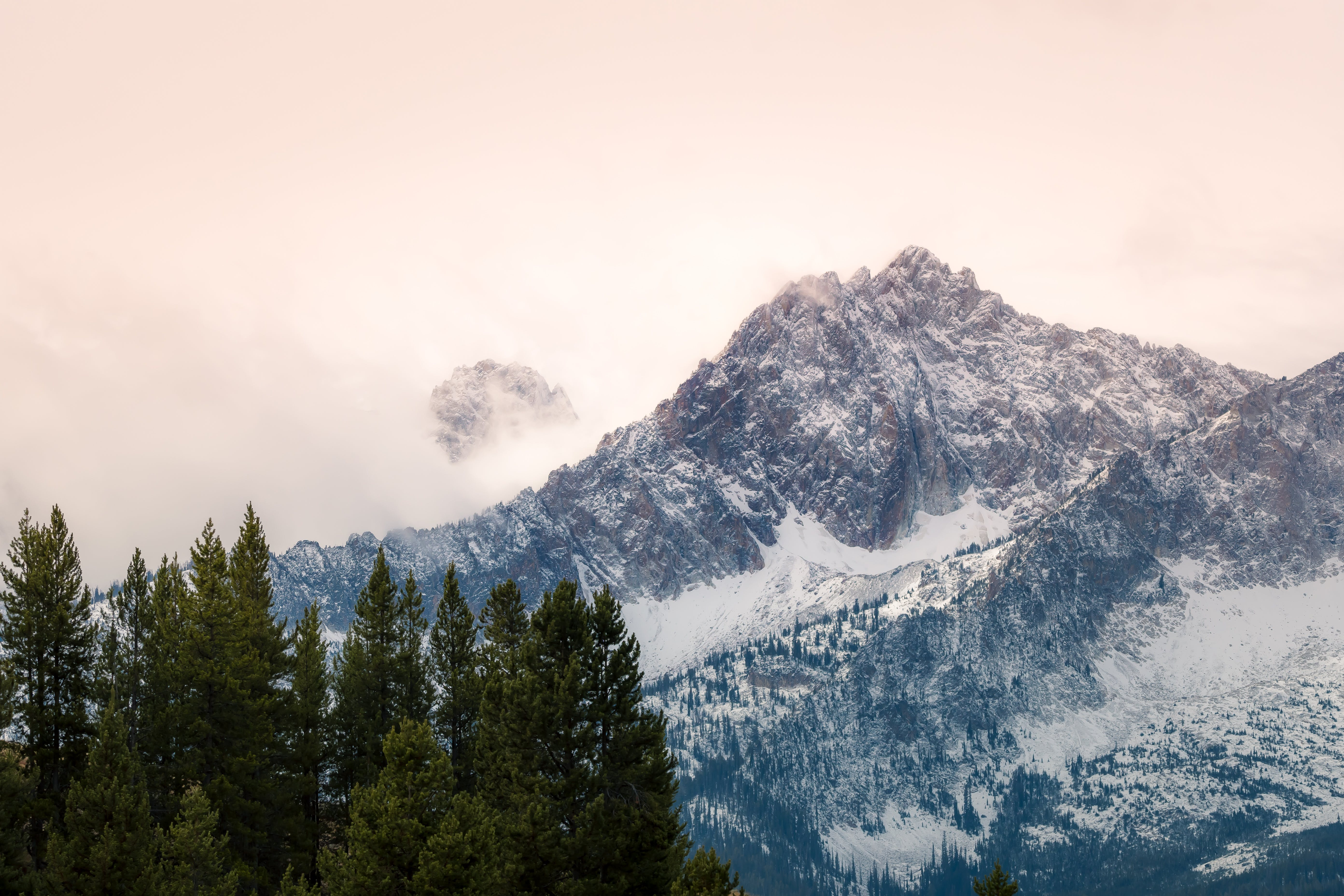 Mountain and Trees