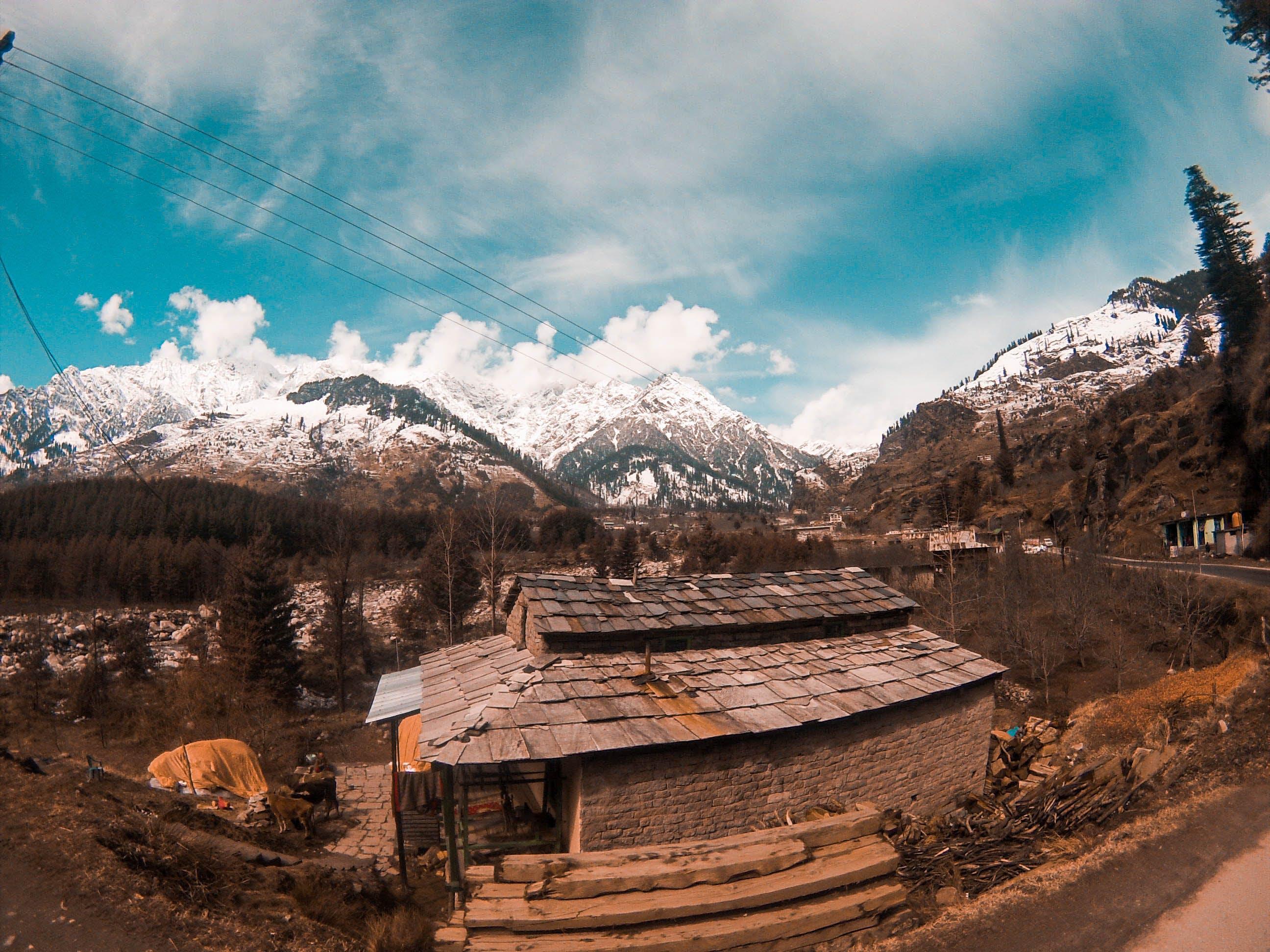 Бесплатное стоковое фото с горы, деревья, дневной свет, живописный