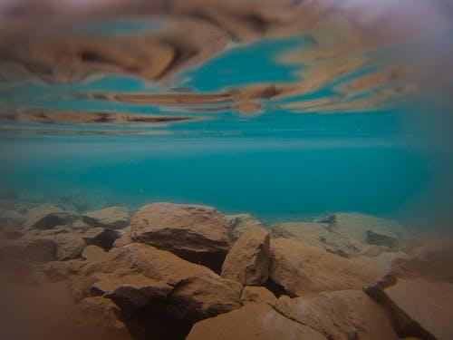 Imagine de stoc gratuită din apă albastră, aventură, cameră, subacvatic
