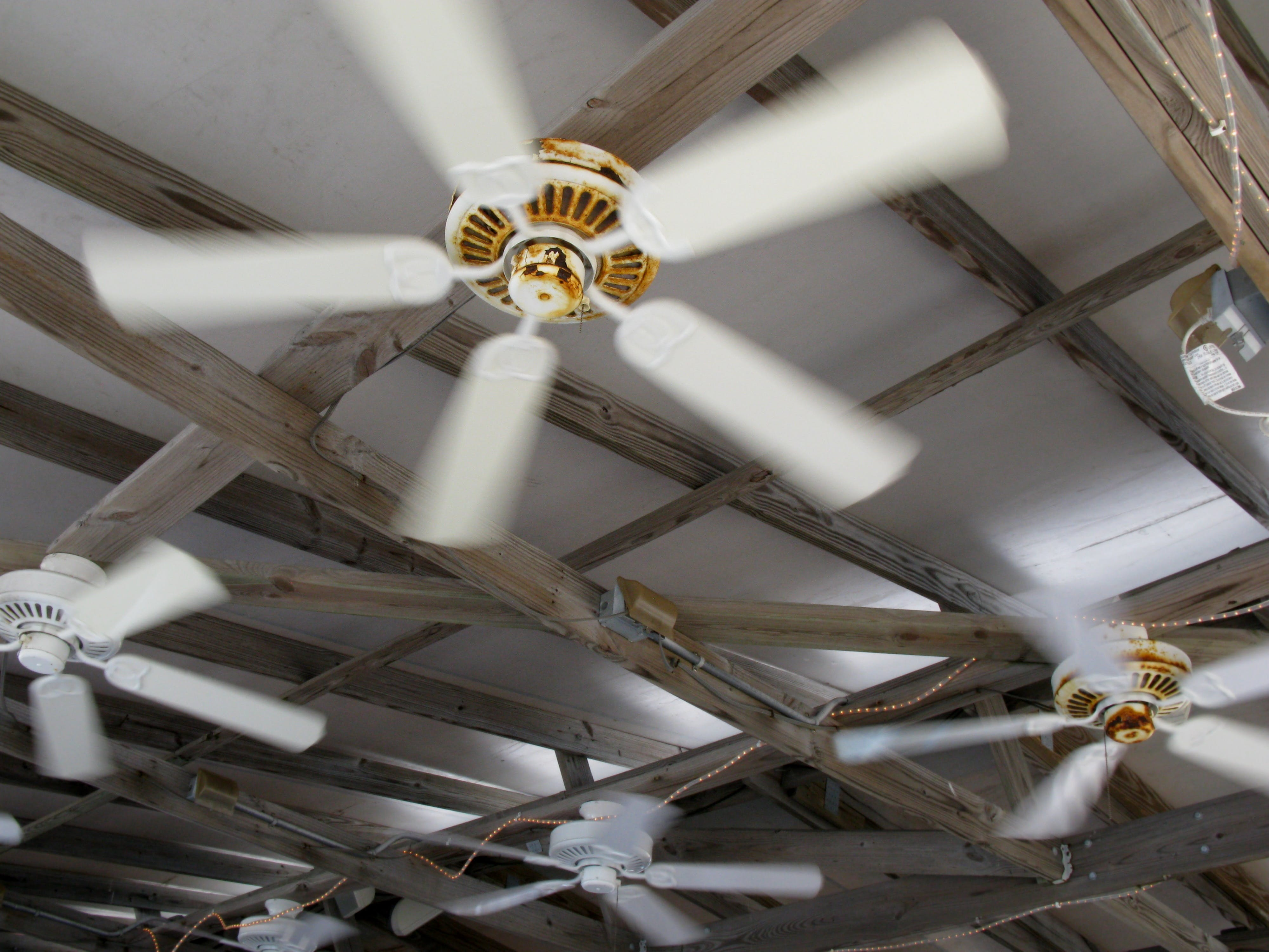 Free stock photo of ceiling fans, fans, outdoor fans